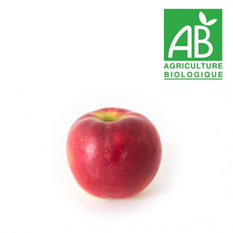 Pomme Crimson crisp bio