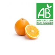 Orange mi sanguine bio