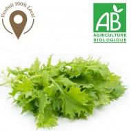 Salade Mizuna Bio