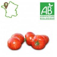 Tomate Red Zébra Bio