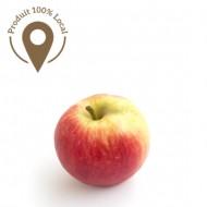Pomme Elstar en conversion bio