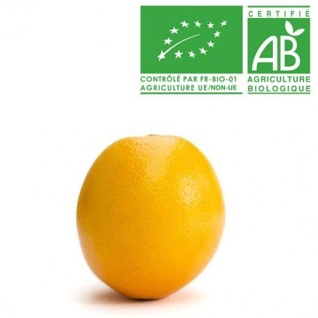 Orange de table EXTRA