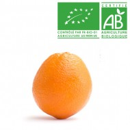 Orange de table Bio