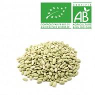Flageolet vert Bio