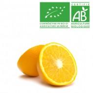 Orange juteuse Bio