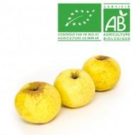 Pomme Goldrush bio