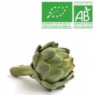 Artichaut breton bio
