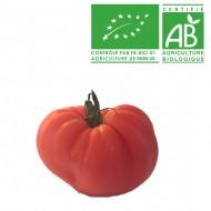 Tomate Côtelée Marmande bio
