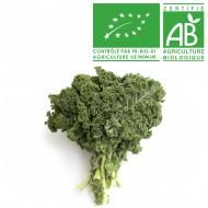 Chou Kale Bio