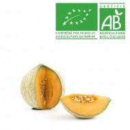 Melon français bio cal.15